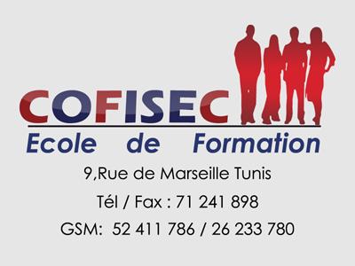 Cofisec formation centre de formation professionnel tunisie for Formation decoration interieur tunisie
